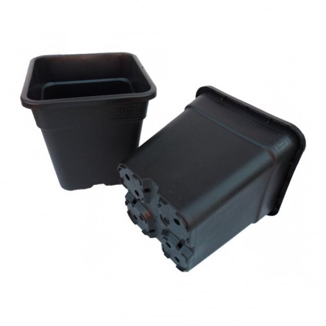Premium Square Pots (Various Sizes)
